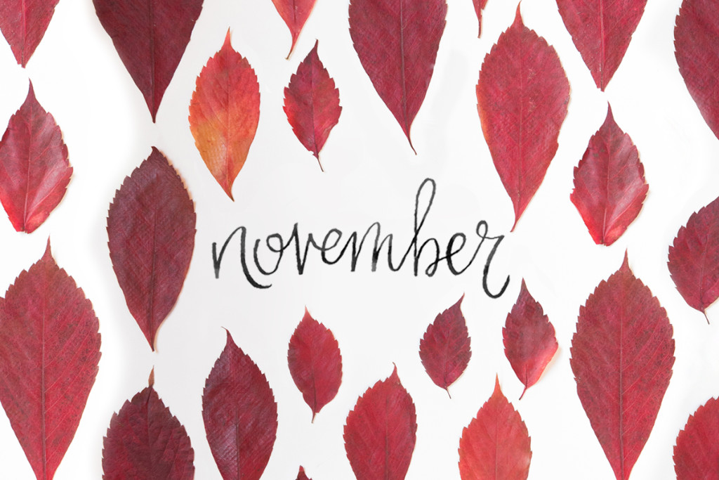 November Events - Toneworks Music Therapy